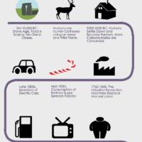 History of Obesity