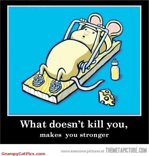 Funny Fitness Memes