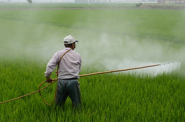 Using pesticides