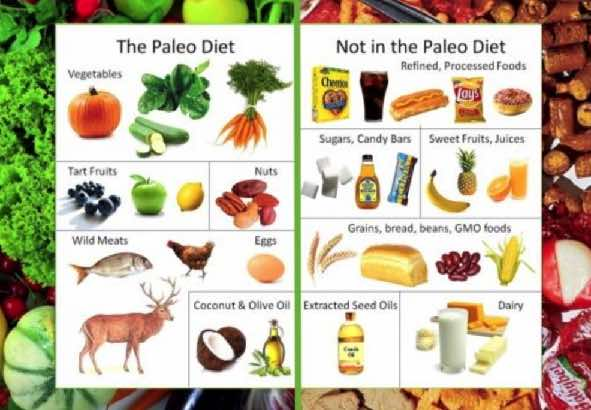 Paleo diet yes or not